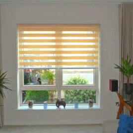 Duel Cream Day & Night Blinds