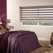 Day and Night Blinds - Zebra - Vision Blinds